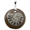 Fossil Ammonite - Round Necklace