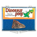 Dinosaur Poop Natural Educational Box