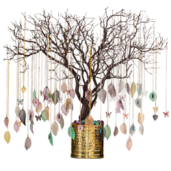 Leaf Aura Jewelry Assortment - Without Manzanita Tree Display
