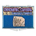Dendritic Crystal Educational Box