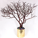 Manzanita Crystal Jewelry Tree Display